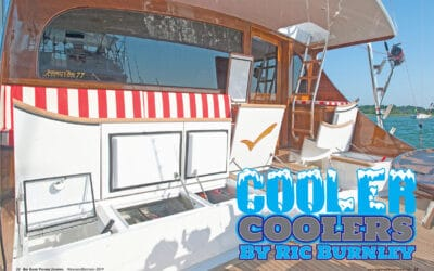 Cooler Coolers